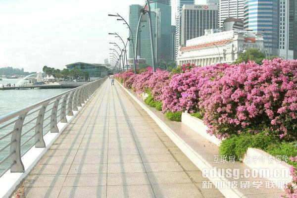 新加坡哪所大学有金融专业