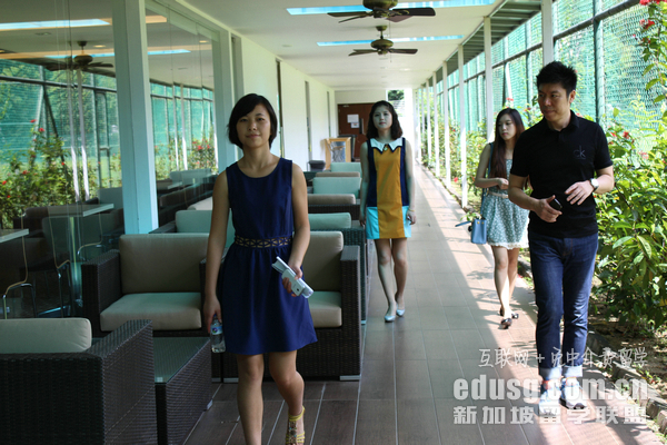 新加坡专科教育名校
