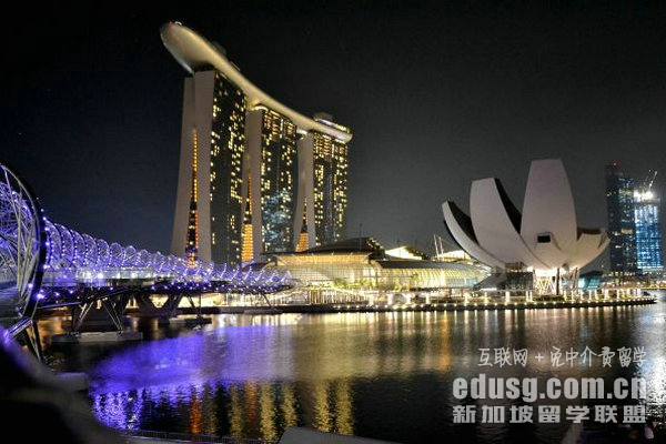 新加坡淡马锡理工学院微电子专业