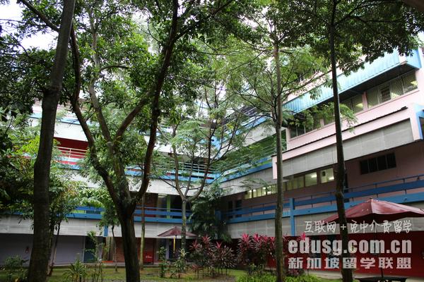 新加坡小学预备班学院