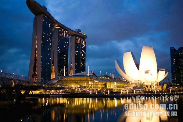 新加坡公立本科