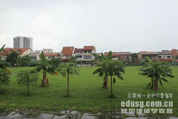 大�I暾�新加坡�T士