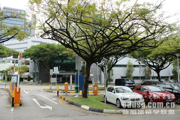去新加坡读本科贵吗