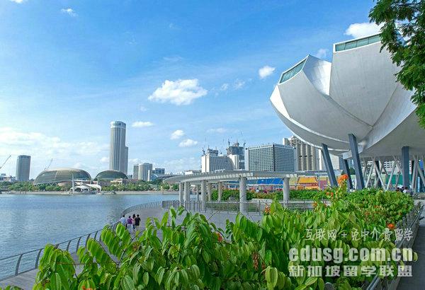 新加坡旅游管理专业哪个大学好