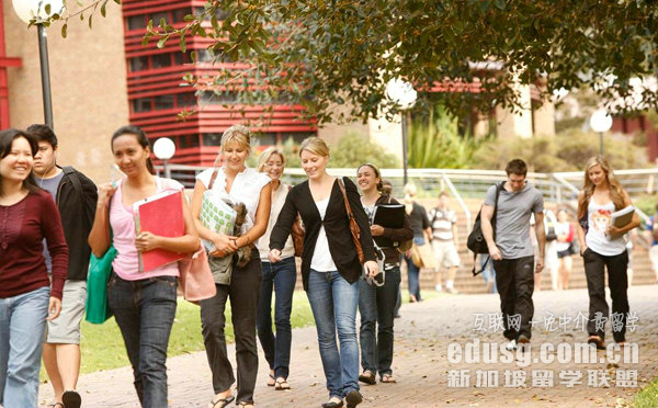 国内一般本科如何申请新加坡研究生